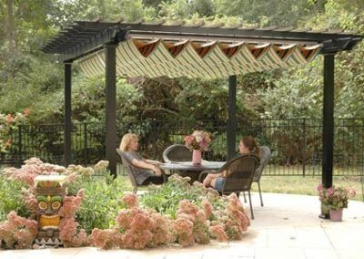 Pergola covered aristocrat